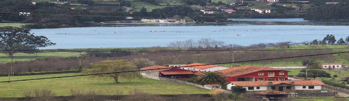 altimggeneralPLANTACION DE MANZANOS JUNTO A LA RIA DE VILLAVICIOSA - Asturias
