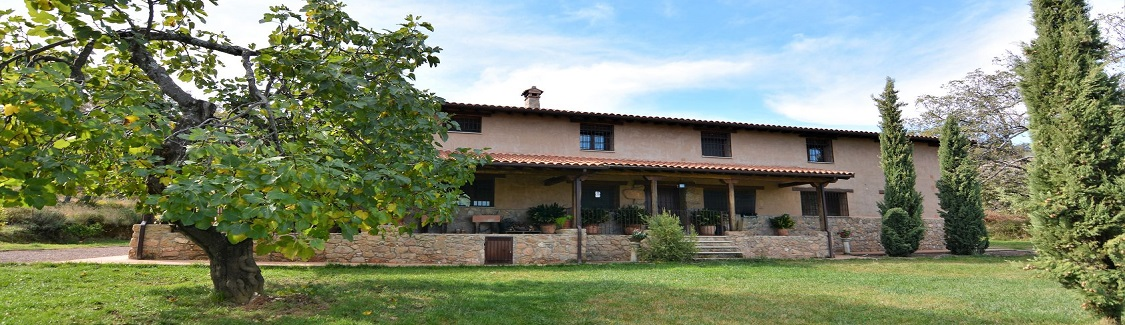 FINCA WITH 3 HOUSES AND ORGANIC CULTIVATION IN LA VERA.